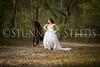 StunningSteedsPhoto-HR-3040