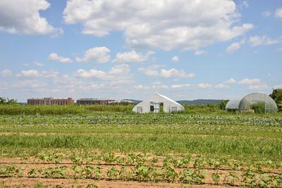 809-Farm-11