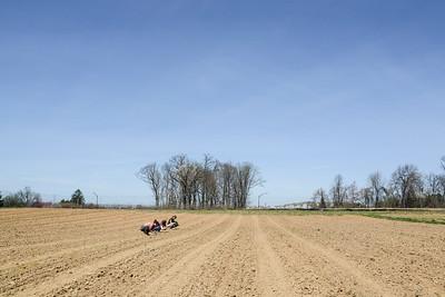 1779-Farm-FirstCrops-25