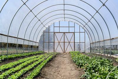 1779-Farm-FirstCrops-01