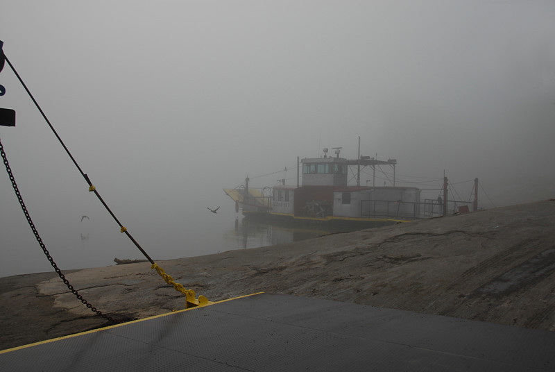 Fog and Flight