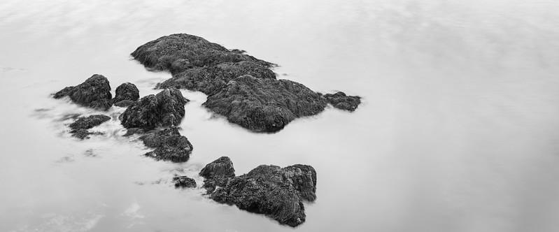 Rocks and Seaweed / Rockport, Maine