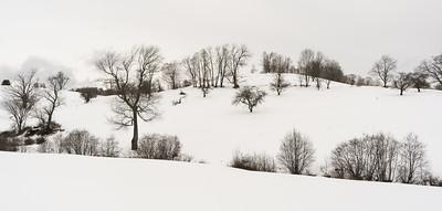 Winter Hillside / Pomfret, Vermont