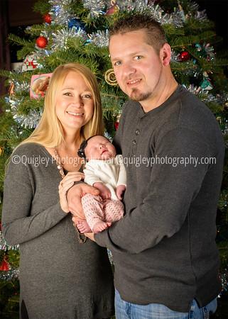 Anderson family xmas tree_DSC6741
