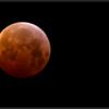 Maansverduistering/ Lunar eclipse