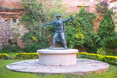 13 Zorro at Posada Hidalgo