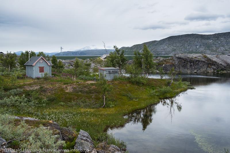 Bjørnfjell 11. aug 2019
