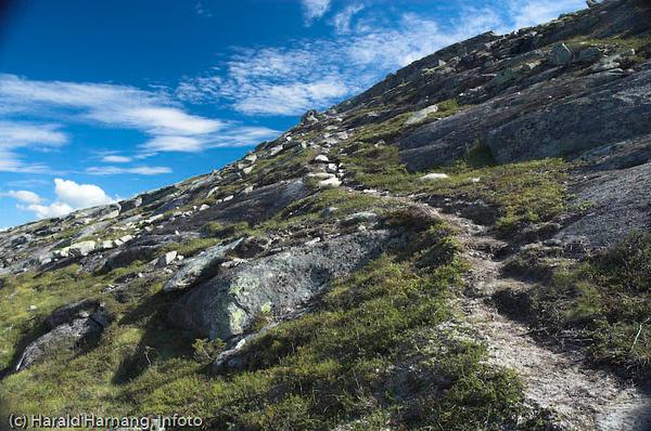 Sti opp mot toppen av Skarstadtind fra Skarstad. Ballangen kommune.