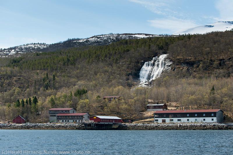 Forsheim, hytter, nedlagt gårdbruk, tidligere forskningsstasjon, sørsiden av Skjomenfjorden.