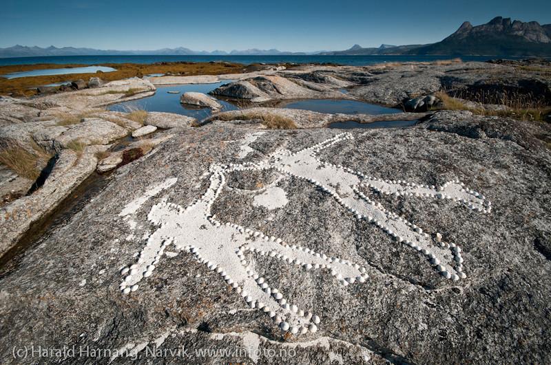 Sommersel i Hamarøy kommune, Nordland. Ungers lek med albuskjell og korallsand.