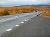 Mellomriksveien mellom Kiruna og Narvik, her nær Abisko.