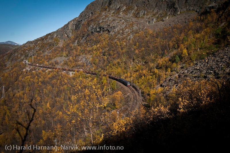 Malmtog fra Kiruna mot Narvik i Fagerlia. Rallarveien rett til høyre.
