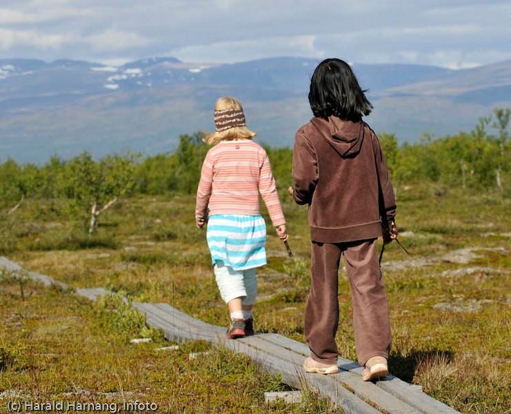 Tursti rett sør for Abisko Turiststation, Sverige.
