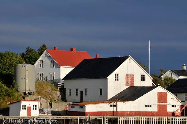 Lofoten sommer 2008. Henningsvær.