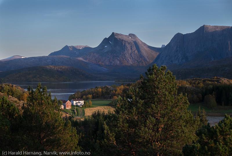 Rødøya