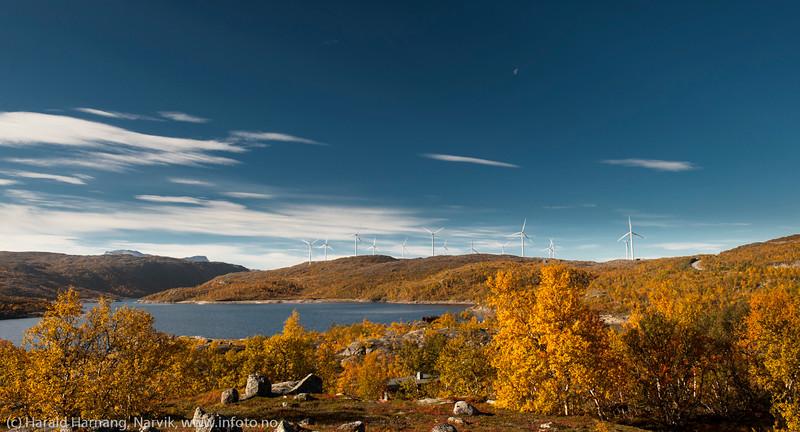 Hytte nede i skogen ved Øvre Jernvann. I bakgrunnen Nordkraft Vinds 14 møller i mølleparken på Skitdalshøgda. 15. sept 2014.