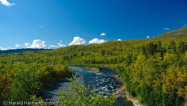 Abisko nasjonalpark, ca 3 km langs Kungsleden, sør for Abisko Turiststasjon.
