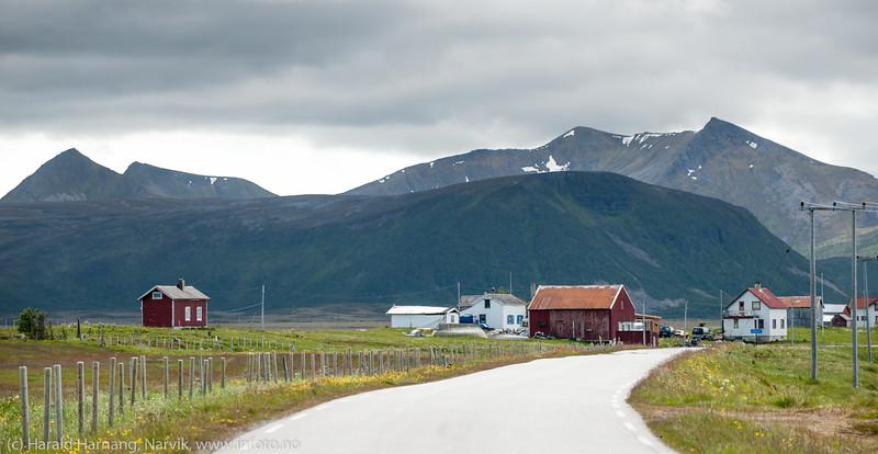 Andøya, nær Skogvoll.