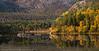 speiling i Efjord