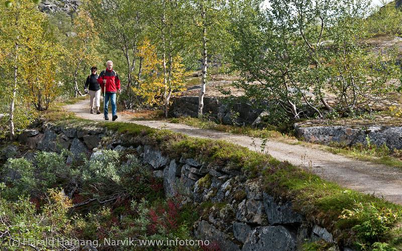 Rallarveien, fra Bjørnfjell og ned mot Sildvik. Sept 2011.