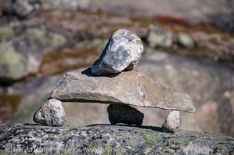 Skjomfjellet: Varde på tur opp mot Storsteinfjellbreen.