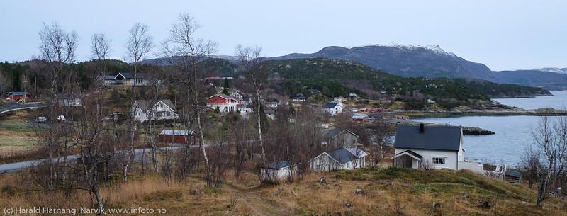 Øyjord