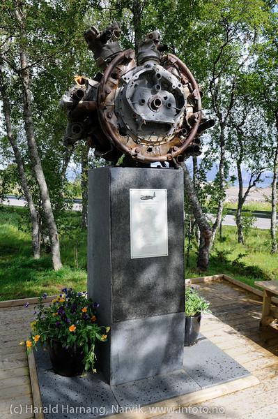 """Monument over flyulykken der flyamfibiet """"Kvitbjørn"""" kjørte inn i fjellveggen ved Slottstrand i Lødingen kommune. Avduket sommer 2010."""