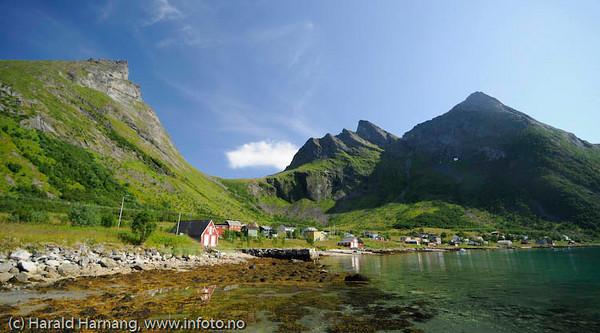Steinfjordbotn, lita bygd på nordsiden av Senja. To-tre fiskebåter og ditto fast bosetting, ellers mye hus som er blitt til ferieboliger. En ikke uvanlig utvikling.