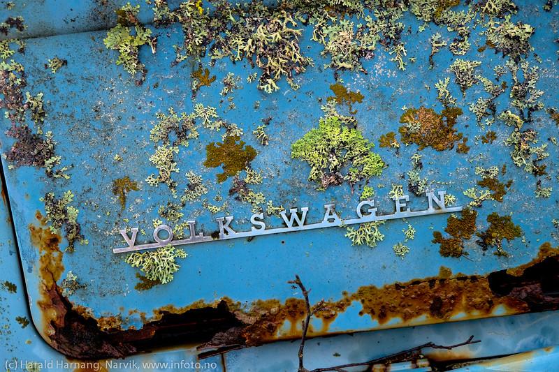 VW-buss som naturen er i ferd med å ta tilbake.