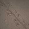 20090422as20-14-39 Firfisle (Zootoca vivipara)