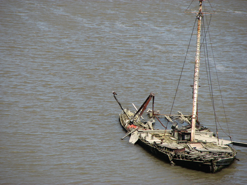 Wreck of an old boat in the shallows near King's Ferry. Note the bald eagle perched on the stern.