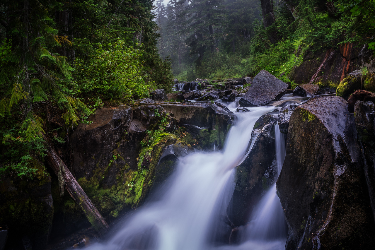 Mt.  Rainier Stream