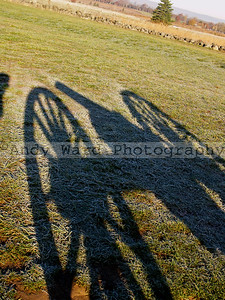 Cannon_Shadow_11_11