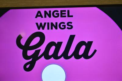 Linda Kerkau - Morning Sun  2016 Angel Wings Gala