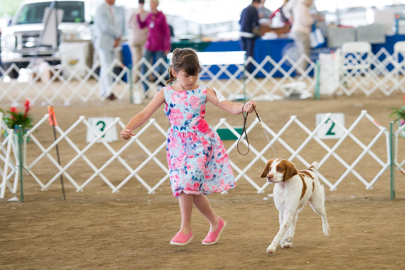 Madi handling Dottie in Open Junior
