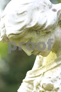 Closeup  copyrt 2014 m burgess