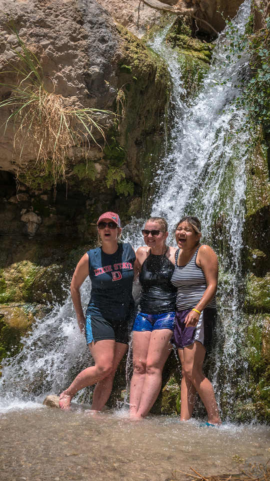 Cooling off in the springs of Ein Gedi
