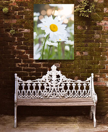 Metal prints add a bit of interest and beauty to patios and outdoor living spaces. These durable prints are intensely colored and can withstand weather and full sun for years without fading.