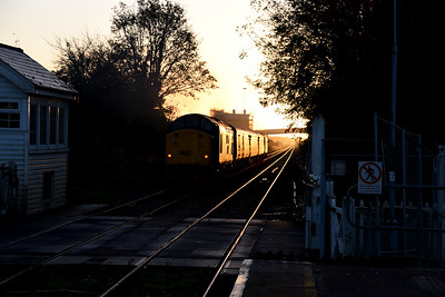 37716, Cantley. 08/11/18.