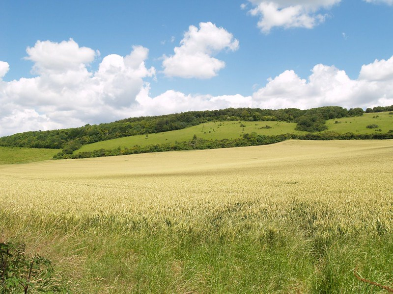 Winchcombe Valley from the road by Winchcombe Farm