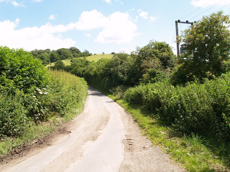 The road and hedgerow  by Winchcombe Farm