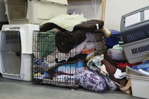 Bedding for evacuated pets