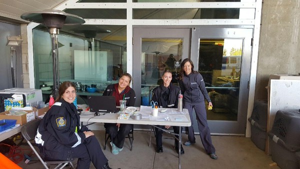 ACCC staff accepting evacuated pets at City of Edmonton Reception Centre