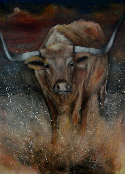 The Texas Longhorn Bull