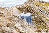 GBH Morro Bay (3)