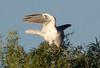 WTK CLU__MG_8317_2011-12-08-19-44-35-2 (2)