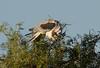 WTK CLU__MG_8274_2011-12-08-19-41-26-2 (2)