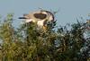 WTK CLU__MG_8271_2011-12-08-19-41-24-2 (2)