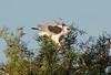 WTK CLU__MG_8275_2011-12-08-19-41-27-2 (2)