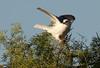 WTK CLU__MG_8287_2011-12-08-19-42-04-2 (2)